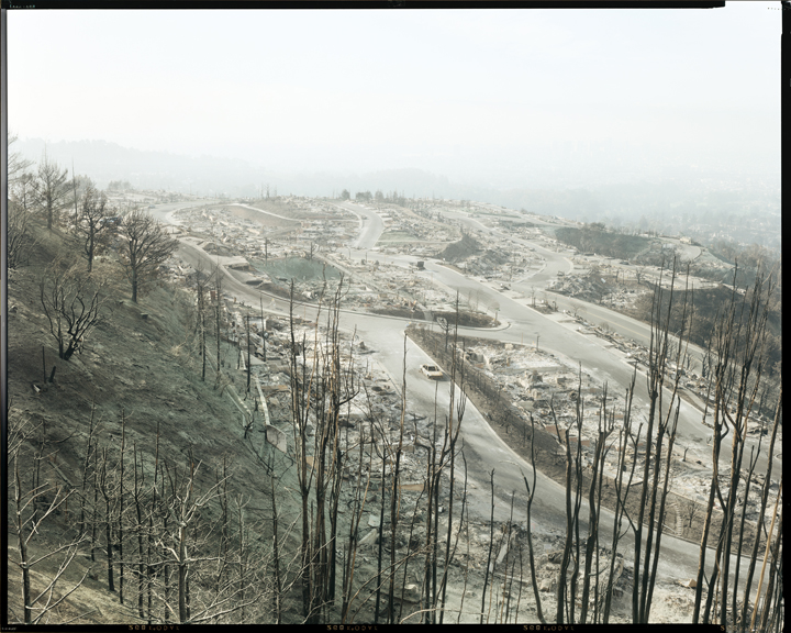The Oakland-Berkeley hills in the aftermath of the 1991 Firestorm. Photo copyright Richard Misrach