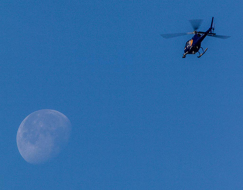 A news helicopter flew over the Gill Tract Wednesday. Photo: Ira Serkes