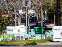 Will you miss all the lawn signs on Berkeley medians after tomorrow? Photo: Alan Tobey