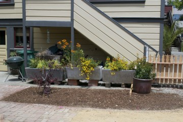 The planters holding blooming yellow flowers are in fact repurposed industrial sinks. Photo: Eden Teller.