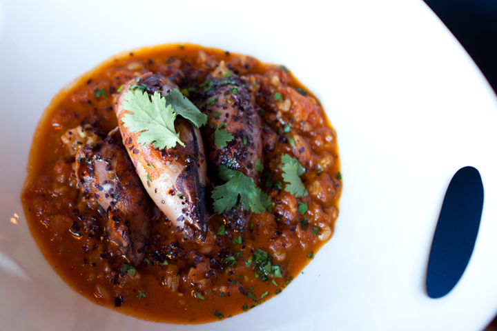 Squid a la plancha: grilled and stuffed with chorizo, freekeh and tomatoes, served over tomato coulis ($11).