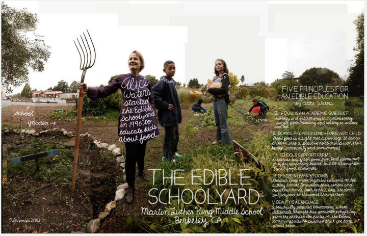 Alice Waters at Berkeley's Edible Schoolyard. Image: Douglas Gayeton, published in his book LOCAL Alice Waters at Berkeley's Edible Schoolyard. Image by Douglas Gayeton, published in his book LOCAL. Click on image to enlarge it