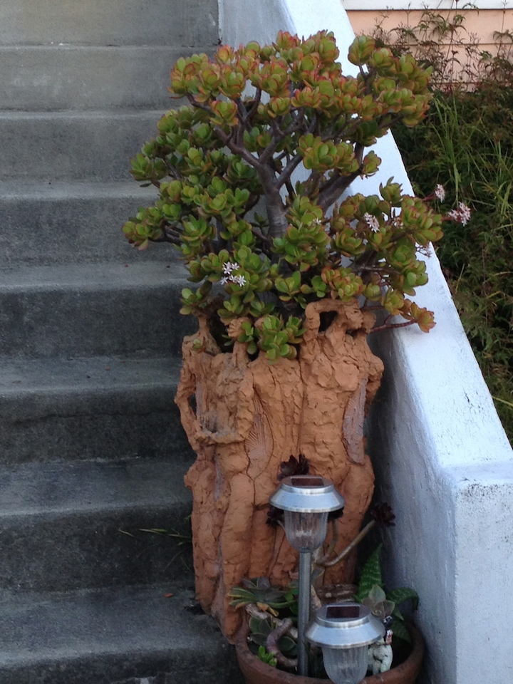 Sculpted planter at 2339 Curtis Street.  Photo: Tom Dalzell
