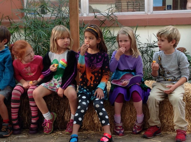 Students at Le Conte Elementary enjoy persimmons from the school's tree. Photo: @BerkeleyDineOut on Twitter
