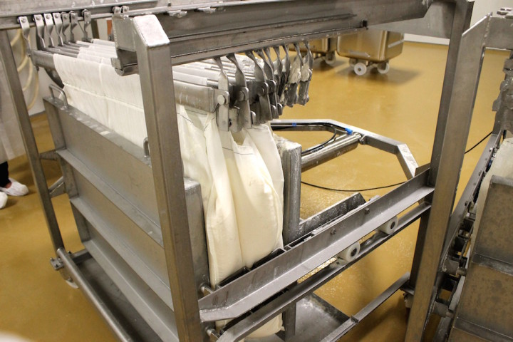 Curds being pressed at Kite Hill. Photo: Kate Williams