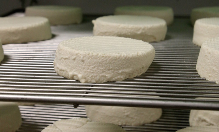 The soft ripened cheese after 7 days at Kite Hill. Photo: Kate Williams