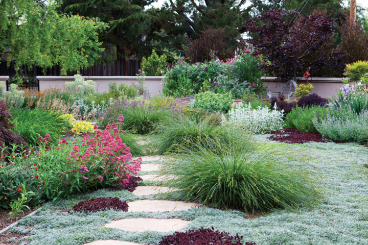 Photo: Sunset Western Garden Book Of Easy Care Plantings
