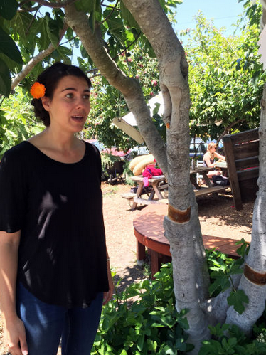 Kate Kaplan, a recent graduate and former manager of the SOGA garden, was one of two student representatives on the committee that formed the Food Systems minor. (Alix Wall)
