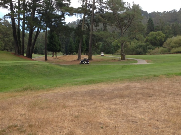 The Tilden Golf Course has shut off irrigation on 20 percent of the course, along the edges.