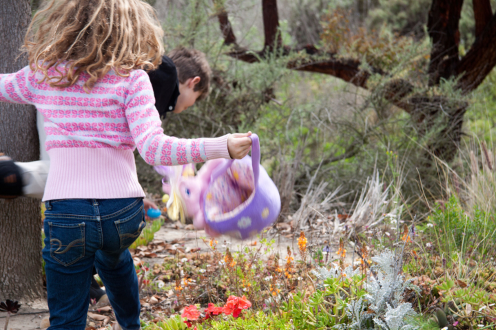 The City of Berkeley's Egg Hunt Extravaganza takes place Saturday at Willard Park. Photo: Abraxas3d