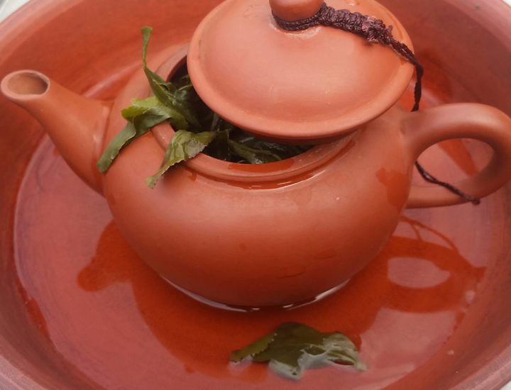 A pot of green tea during a Blue Willow Tea sourcing trip. Photo: Ali Roth