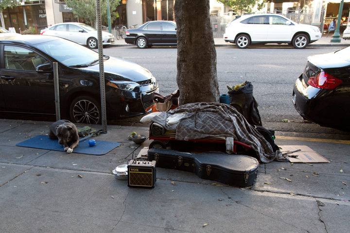 A pet watches over his owner's possessions on Shattuck Avenue in June. Photo: Emilie Raguso