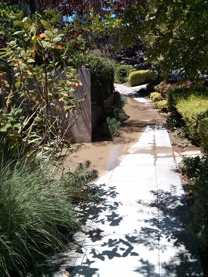 EBMUD is at work in Berkeley after a water main break. Photo: Citizen reporter