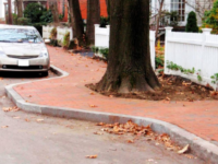 Joseph Poirier thinks Berkeley should install curbs like these around tree roots rather than cutting away the roots. Photo: Joseph Poirier