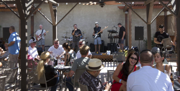 Harvest Wine Celebration 2015 at Crooked Vine Winery. Photo: Crooked Vine Winery