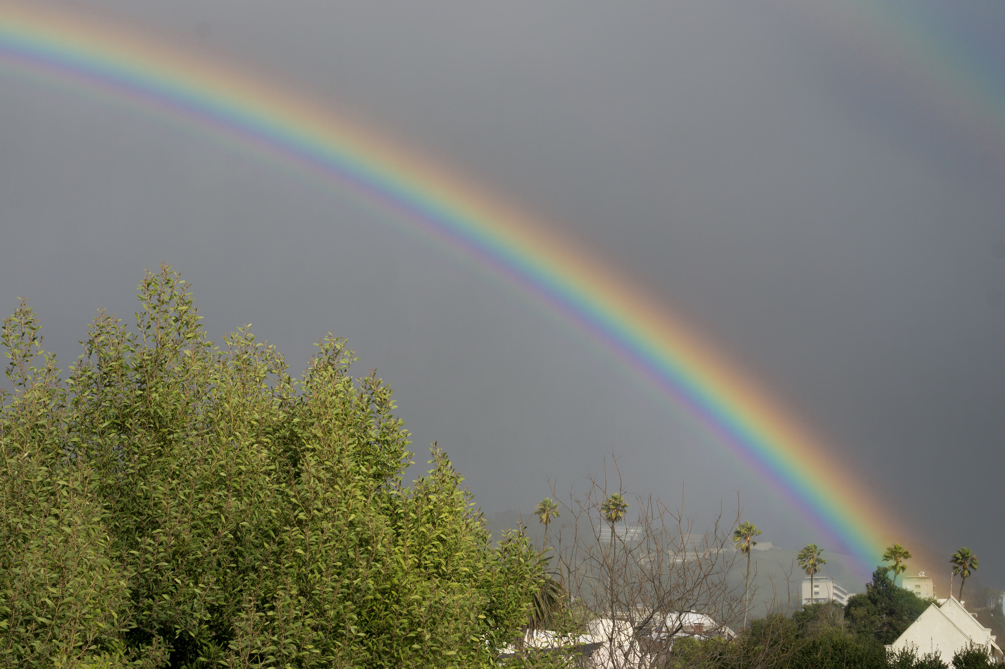 Photos: Rainbow over Berkeley signals hope to many ...