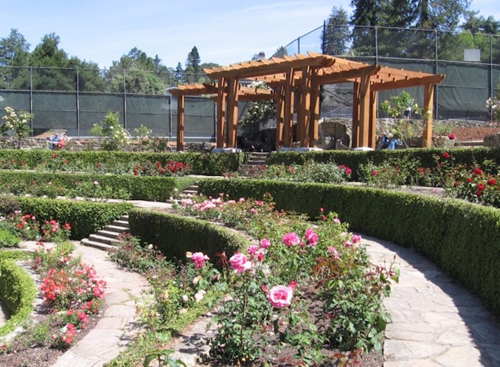 Berkeley rose garden arbor reopens completing first part Berkeley rose garden
