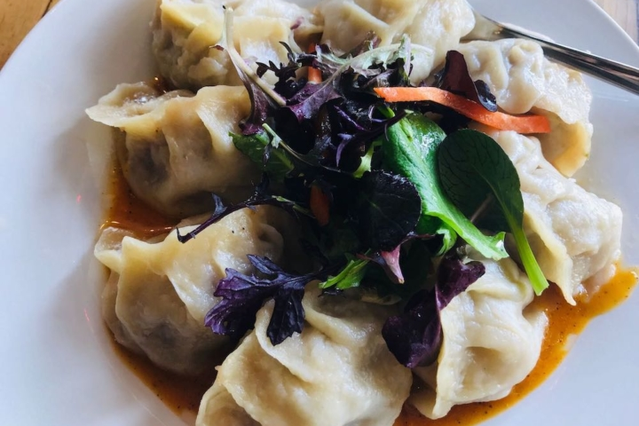 Eight beef sha momo dumplings arranged in a circular pattern on a plate with mixed salad greens in the middle at Café Tibet in Berkeley