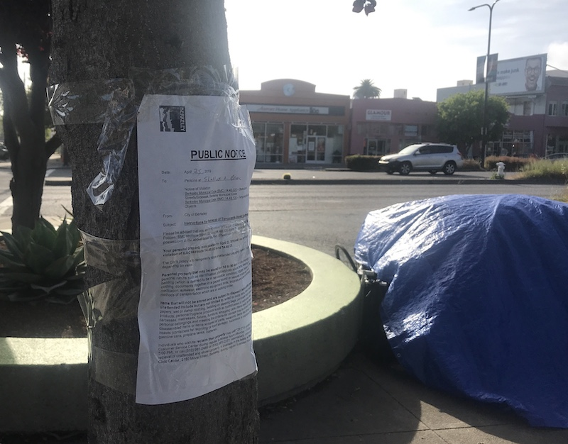 A text-heavy paper notice is taped to a tree. In the background is a tarp covering an unidentified object or set of large objects.