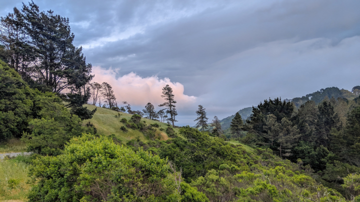 ridge in Berkeley hills with pink clouds.