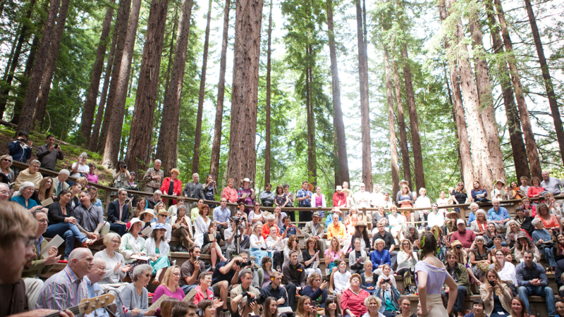 Fashion show in the redwood grove at the UC Botanical Garden
