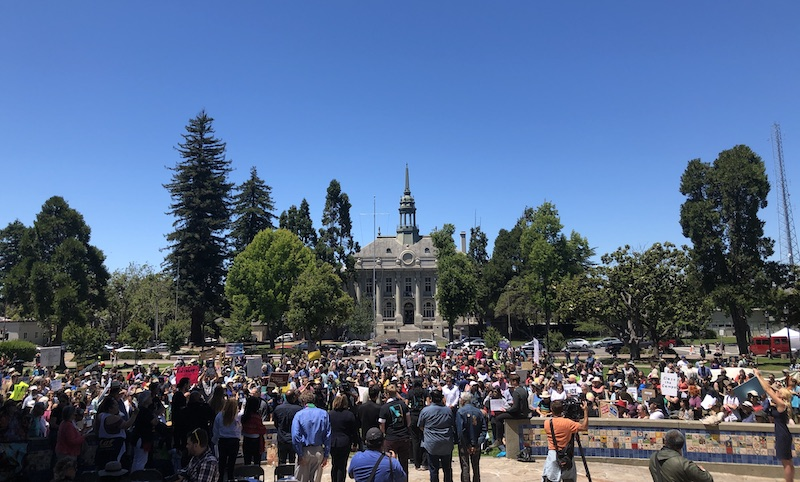 Big crowd shot of people in the park, with Old City Hall in background