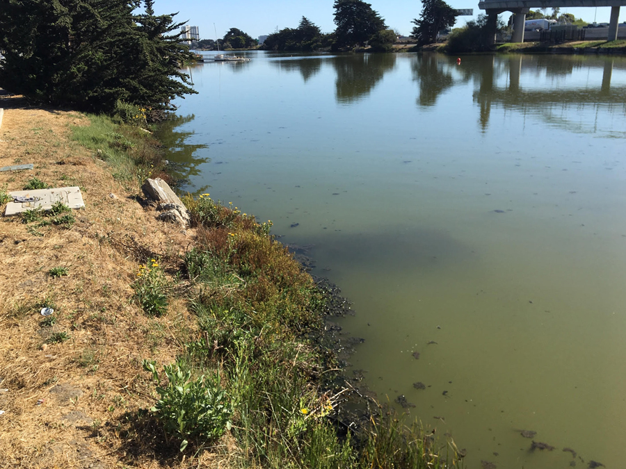 Berkeley says to 'avoid the water at Aquatic Park entirely' after latest test results