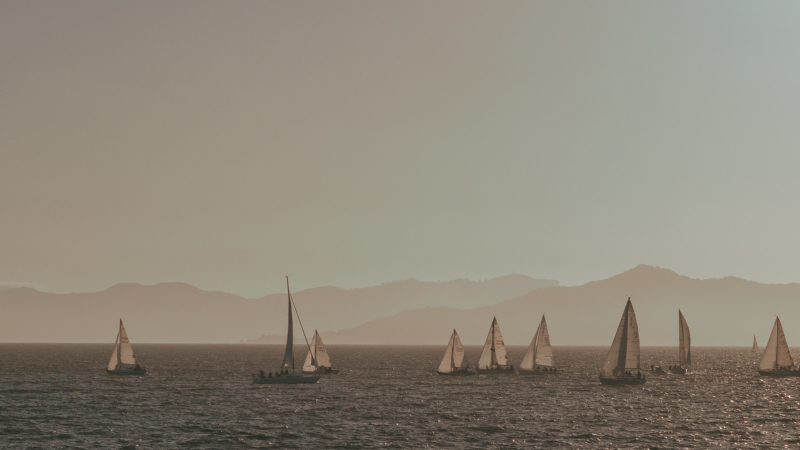 sailboats on San Francisco Bay