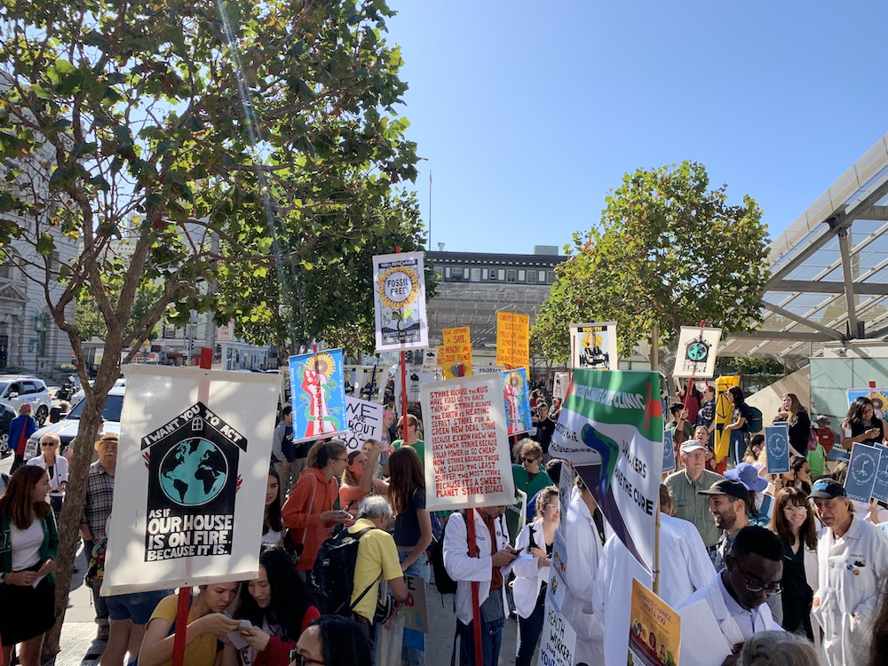 A crowd, holding up colorful protest signs