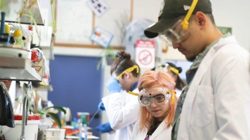 Students at work in a science lab at Bayhill High School. Photo: Courtesy Bayhill High School