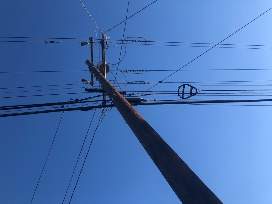Power lines in Berkeley against a blue sky. Photo: Tracey Taylor