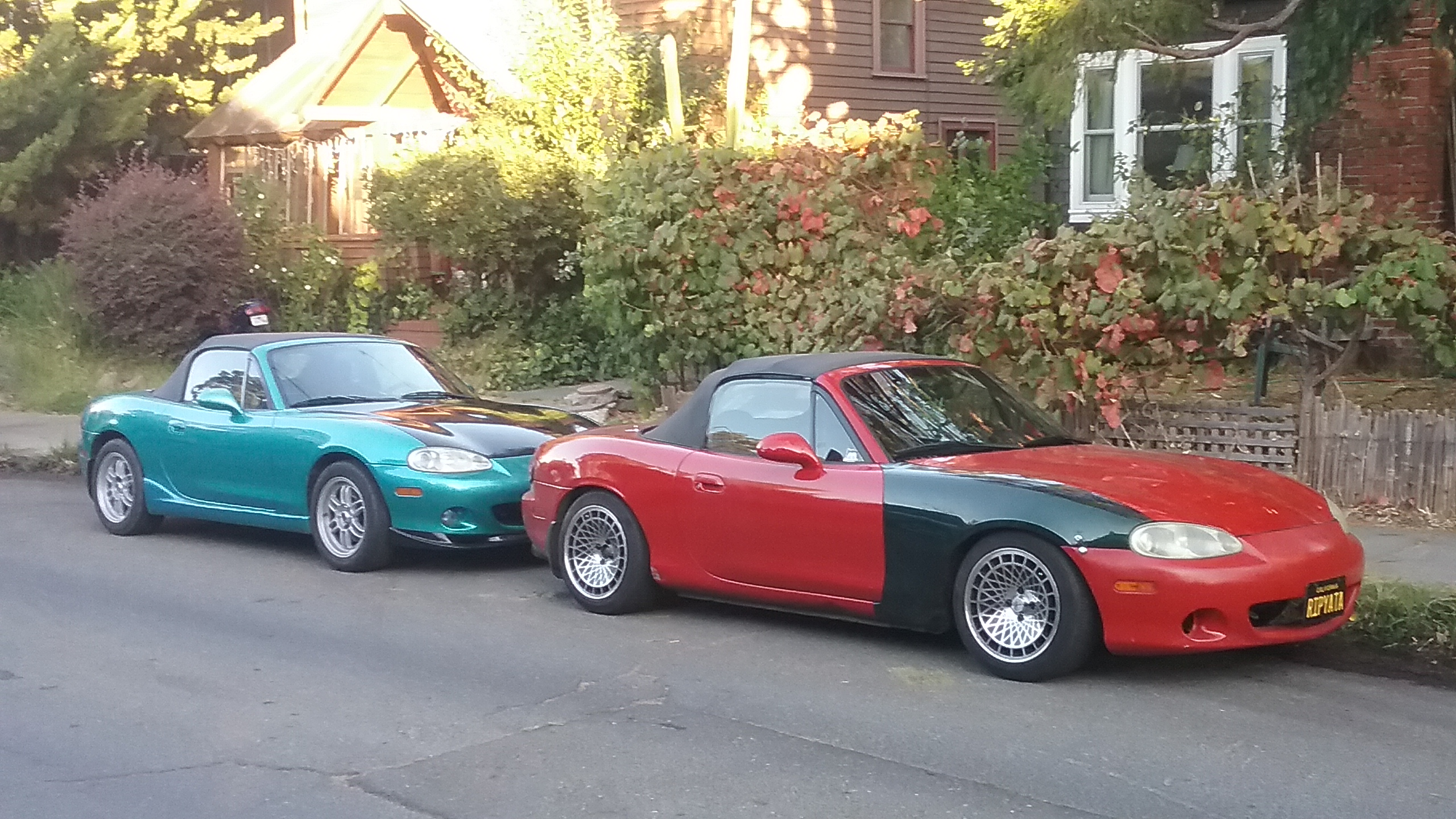 one blue, one red car parked in a row