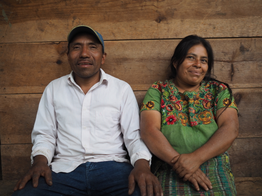Farmers of Maya I'xil, a small indigenous coffee farm in Guatemala, have started beekeeping for a second stream of income during the coffee off-season.