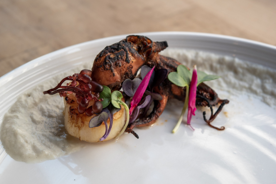 "Scallop, octopus ""chorizo"" with charred fennel purée and sea grapes is an example of Abtract Table's stunning dishes. Chefs Andrew Green and Duncan Kwitkor will be offering a special menu for Oakland Restaurant Week."