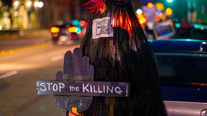 """Demonstrator cloaked completely in sheer black cloth holds """"Stop the Killing"""" sign."""