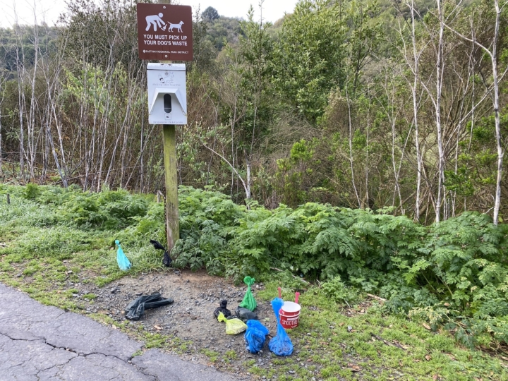 A pile of filled dog poop bags and trash sit in the place where a trash can usually sits at Sibley Volcanic Regional Preserve.