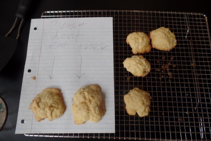 Freshly baked cookies by Leo, a nine-year-old.