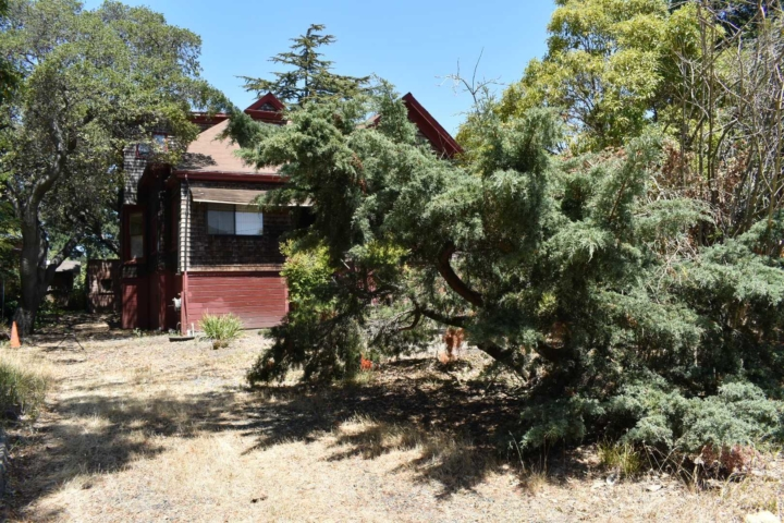 Payson House blocked by trees