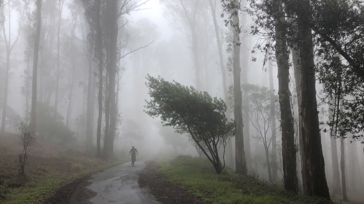 man biking on a trail in the fog