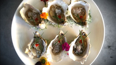 Revival Bar & Kitchen in Berkeley is offering a la carte specials, such as these Hammersly oysters on the half-shell served with mignonette on the side. Photo: Revival Bar & Kitchen